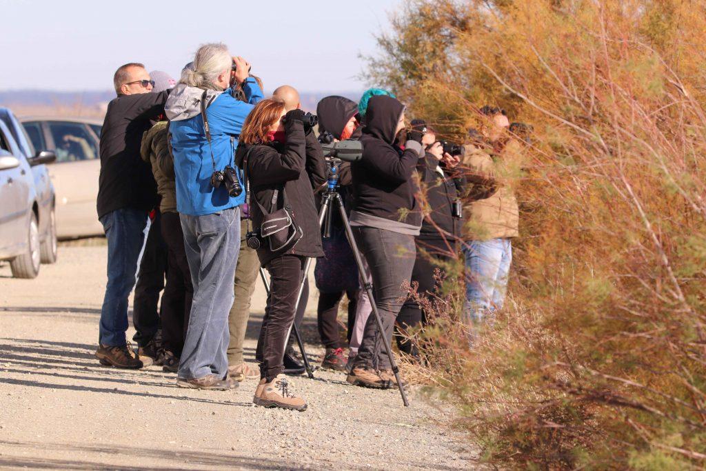Grupo de personas observando aves