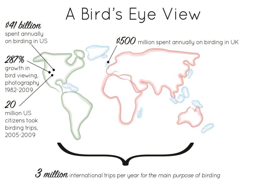Gráfico donde se muestran los datos de turismo ornitológico