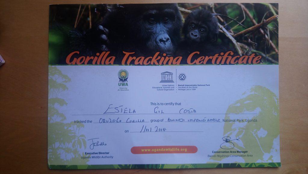 Certificado de haber realizado con éxito el trekking de los Gorilas de Montaña