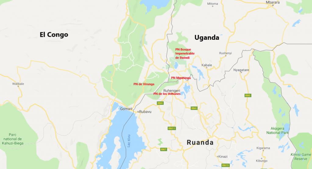 Mapa que muestra los Parques Nacionales donde habitan los Gorilas de Montaña