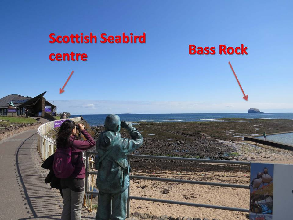 Vistas de Bass Rock y el Scottish Seabird Centre desde North Berwick