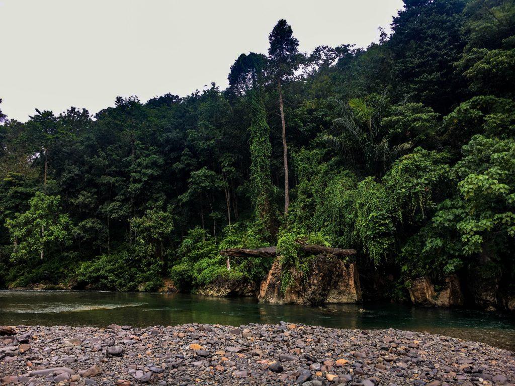 Destinos de Naturaleza: Sumatra